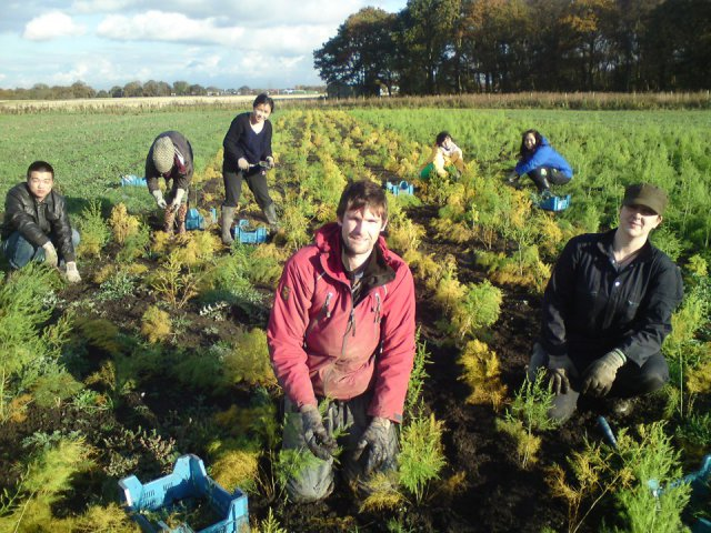 Land Army Volunteers - our new generation of farmers?