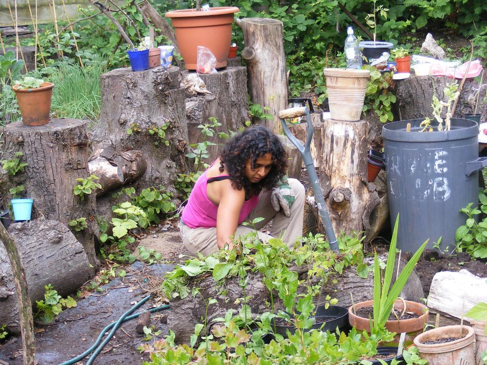 Abundance Manchester's community garden in Withington.