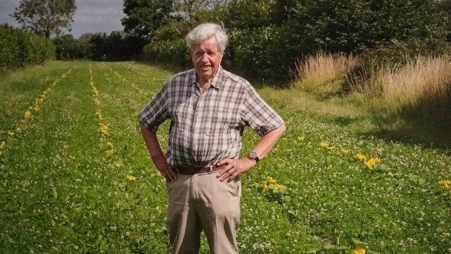 Martin Wolfe