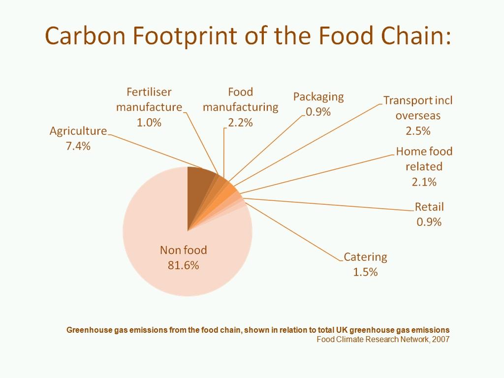 Food production essay