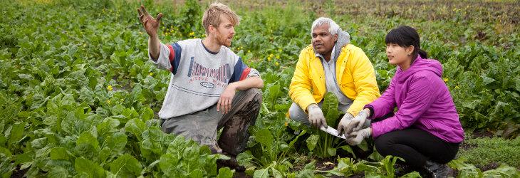 Horticulture Training
