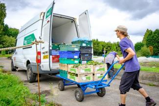 Luke collecting veg from Woodbank