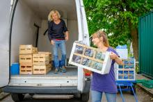 Helen & Amy loading up the VBP van with Woodbank produce.