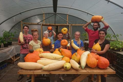 Team holding up squash in the polytunnel